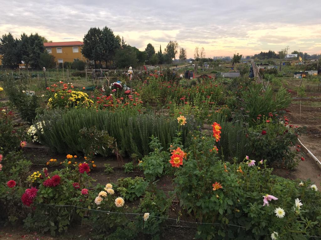 Huerto-Garden